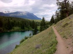 Mountain Biking in Jasper