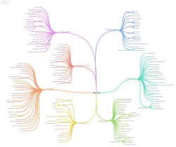 Mind Map Small