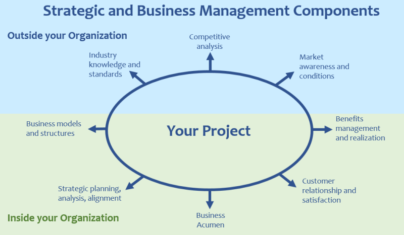 Strategic and Business Management