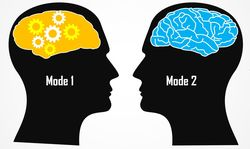 Bimodal IT Minds