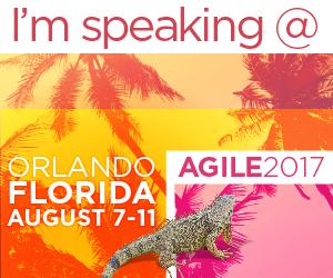 17-2480-Agile_Orlando2017_Speaking_300x250_FM (1)