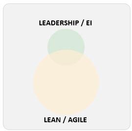Agile and Leadership 1