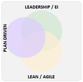 Agile Leadership and Plan Driven