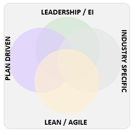 Beyond Agile Model