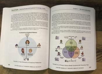Beyond Agile Book pic 4