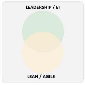 Agile and Leadership 2
