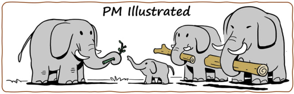 PM Illustrated - Banner 800