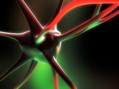Brain_neuron